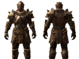 Armor Set of Hoolgan the Hungry