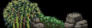 Boar bush Shogun