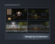 Manage screenshots