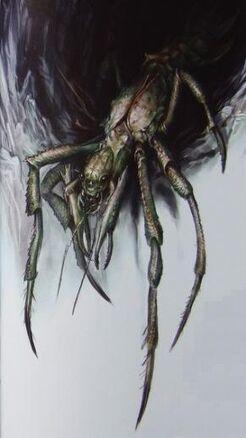 Arachno.jpg