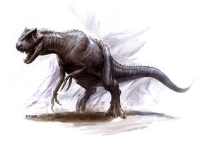 Aciedactylus.jpg