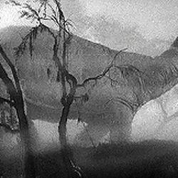Bestiariusz (1933)