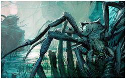 Arachnocidis.jpg