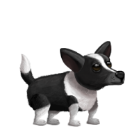 Willy the dog.png