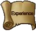 Exp big icon.png