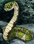 Болотная змея