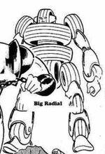 BigRadial.jpg