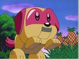 Kirby's Pet Peeve