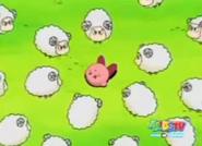Sheep Attack