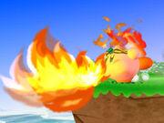 Fire Kirby Wii.jpg