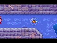 KMA Goldfish 2