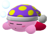 Fig 20 kirby sleep
