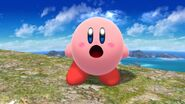 Funny Face of Kirby