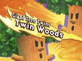 Twin Woods