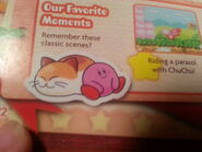 Kirby's Dream Land 3 (Kirby and Nago)