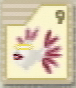 64-icon-09.png