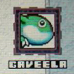 Gaveela-tk-pic