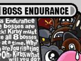 Boss Endurance