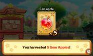 TKCD Gem Apple