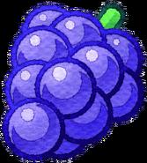KMA Grapes artwork transparent