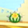 Cactus-ey.png