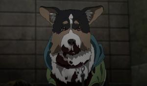Parasite Dog.png