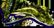 Elecantus (Sen IV).png