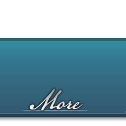 More - Nav (Wiki).png