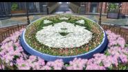 Mishelam Wonderland flowerbed Photo (Sen IV)