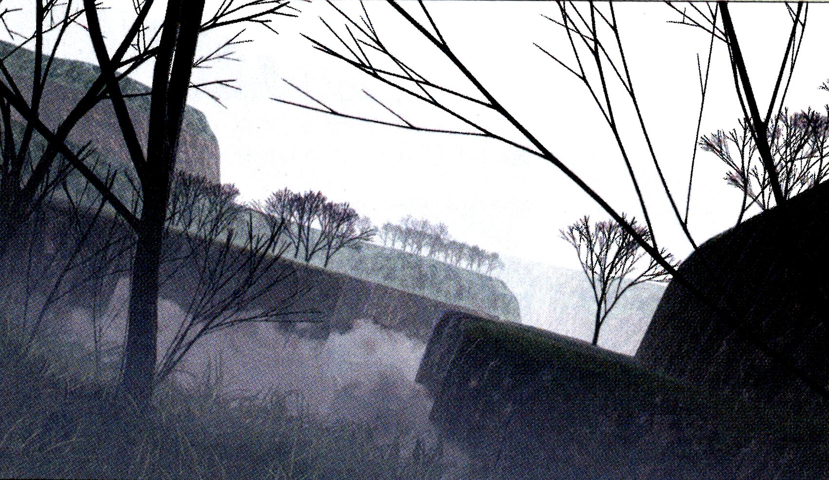 Nebel Valley