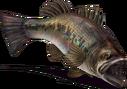 Valleria Bass (Sky SC).png