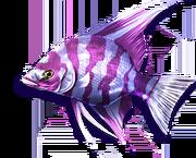Queen Azelfish (Sen III).png