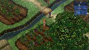 Rolent - Perzel Farm 5 (Sky1)