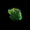 Grass-Small fern 1