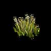 Grass-Grass 4