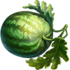 Watermelon Seeds.png