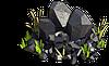 Coal-Coal in the grass