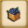 Blueberry (Item)