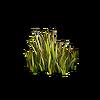Grass-Grass 5