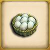 Chicken Egg (Item)