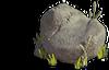 Rock-Smooth stone