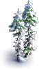 Tree-Snowy double fir-tree