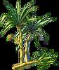 Sugarcane Seeds.png