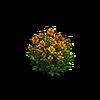 Grass-Sunflowers 1