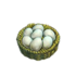 Chicken egg.png