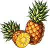 Pineapple Seeds.png