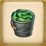 Cucumber Crops framed.png