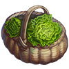 Lettuce Crops.png