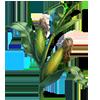 Corn Seeds.png