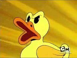 Moby Duck.jpg